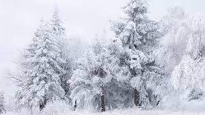 winter mac backgrounds free download snow winter fantasy mac hd wallpapers january