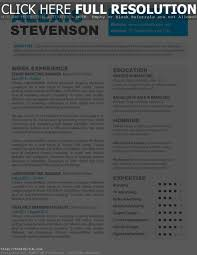 Word Resume Template Mac Doc Microsoft F Peppapp