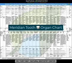 Tooth Organ Meridian Chart Tooth Body Connection Meridian Tooth Map