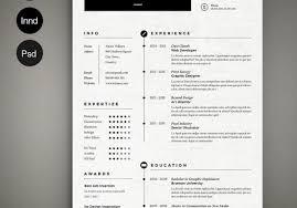 Cool Resume Templates Free Fascinating Graphic Resume Template Personal Portfolio Digital Cv Template