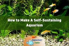 how to make a self sustaining aquarium