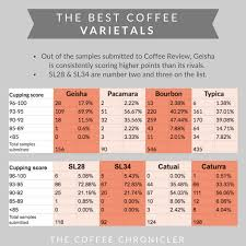 The Best Coffee Beans In The World The Ultimate Guide