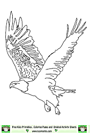 Eagle Coloring Pages Bird Coloring Pages Animals Coloring Pages