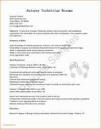 Cna Resume Hospital Experience Professional Cna Resume Sample Resume