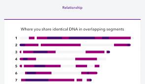 Viewing Shared Matching Segments Of Dna 23andme Customer