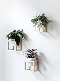 DIY Air-Drying Hanging Planters by Food52