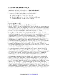 Example Of Scholarship Essay Scholarship Essay Example Pdfsimpli