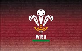 Welsh Rugby Union | Wales & Regions | National Leagues Round Up