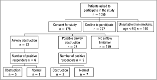 Flow Chart Presenting The Number Of Patients And The Results