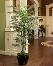 6\u0027 Reed Palm Silk Tree 92 Best Artificial Trees images in 2019 | tree