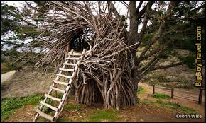 invisible tree house hotel. Best Treehouse Hotels In The World, Top 10, Human Nest California Invisible Tree House Hotel