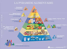 food pyramid 2015 in spanish. Fine 2015 Belgian Food Pyramid Throughout 2015 In Spanish M