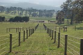 wire farm fence. Here\u0027s A Large Post And Wire Horse Fence At Farm. Farm F