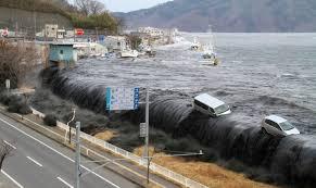 Resultado de imagem para tsunami