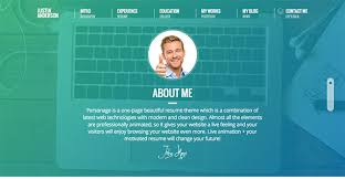 Resume One Page 20 Best Vcard Wordpress Themes 2019 Athemes