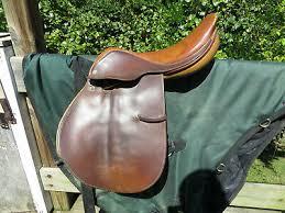 Antares Saddle Flap Size Chart Saddles 16 5 Crosby