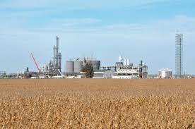Resultado de imagen para biocombustibles en argentina