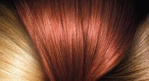 Chestnut Brown Hair Color Chestnut Brown Hair Dye L