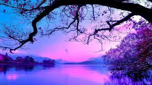 Purple sunset [2560 × 1440]: wallpaper