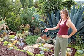 Small Picture 21 Succulent Garden Designs Garden Designs Design Trends