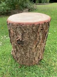 Stump Seating Real Rustic Log Stools For Garden Seating And Fire Pit Log Stools Ebay