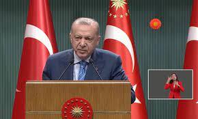 الرئيس التركي: بعض السوريين سيبقون في تركيا