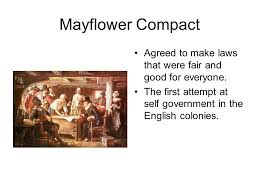 flower compact essay important