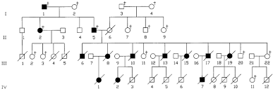 Pedigree Chart Of Reported Family Illustrating Autosomal