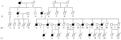 Pedigree Chart Pedigree Chart Of Reported Family Illustrating Autosomal