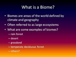 What Are Biomes What Is A Biome Biomes Are Areas Of The World Defined By