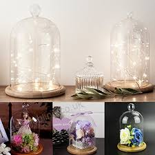 glass display cloche bell jar dome with wooden base diy crafts l b075r6r6vw