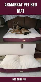 Best Dog Beds for German Shepherds