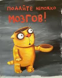 Четыре страны перестали признавать украинские медицинские дипломы  Четыре страны перестали признавать украинские медицинские дипломы