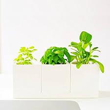 office pot plants. creative modular selfwatering square white pot for all mini desktop plants kitchen garden home office