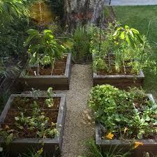 Small Picture Backyard Vegetable Garden Design Ideas erikhanseninfo