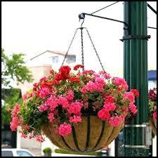 outdoor hanging baskets hanging flower pots hanging flower basket ideas garden flat steel hanging basket with