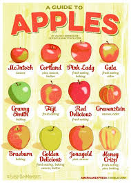 Guide To Apples Fruits Recipes Food Apple Recipes