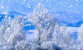 Animated Snow Scenes Moving Animated Snow Wallpaper