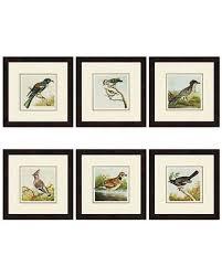 paragon decor birds framed wall art set of 6 3661 on wall art set of 6 with hot sale paragon decor birds framed wall art set of 6 3661
