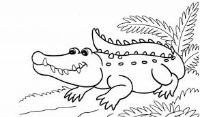 Small Picture printable coloring pages alligator printable coloring pages