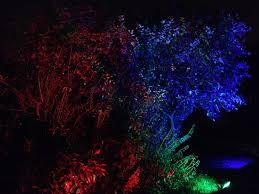 hire outdoor lighting for your garden party in birmingham