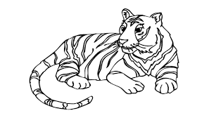 tiger drawing pictures. Unique Drawing Coloring PagesHow To Draw A Tiger  How Draw Tiger Face  Drawing Pictures Throughout Drawing Pictures