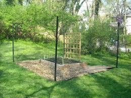deer proof garden fence. Animal Proof Garden Great Control Fencing Deer Fence Buck Stop .