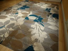 pretty area rugs on