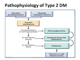 Diabetes Type 2 Pathophysiology Flow Chart Things That Everyone Should Know Regarding Diabetes