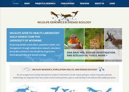 Wyoming Website Design Work Website Design Creative Blue Yonder