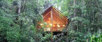 Download Tree Houses Hotels  Solidaria GardenTreehouse Accommodation
