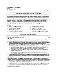 Senior Sales And Marketing Professional Resume
