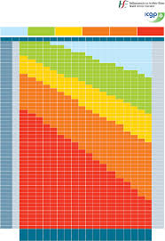 Standard Bmi Chart Free Download