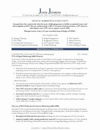 By Bhints Digital Marketing Resume Sample Download